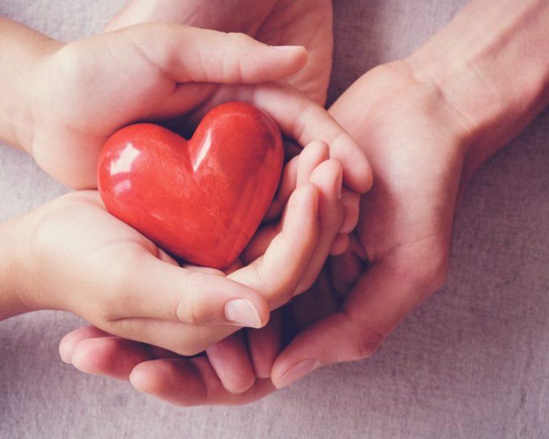 närbild på händer som håller i ett hjärta